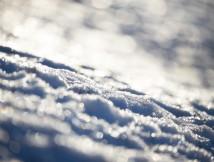 雪が積もりましたね。